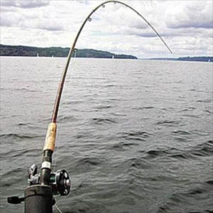 SpinningFishing